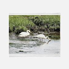 Swan on Pleasant Bay Throw Blanket