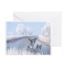 Pet Sympathy Cards (Pk of 10)