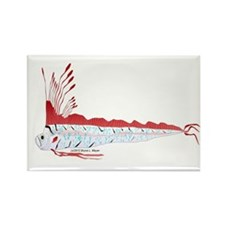 Oarfish (Lilys Deep Sea Creatures) Rectangle Magne