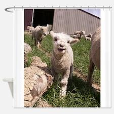 Baby Lamb Shower Curtain