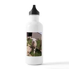 Baby Lamb Water Bottle