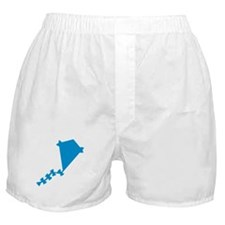 Blue Kite Boxer Shorts