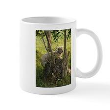 King of the Stump Mug