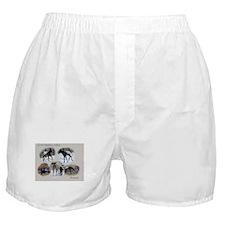Romeo Boxer Shorts