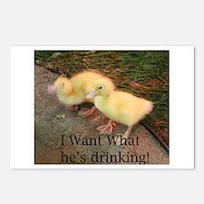 Duckies! Postcards (Package of 8)