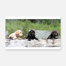 3 Lab pups Rectangle Car Magnet