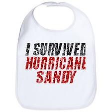 I Survived Hurricane Sandy Distressed Bib