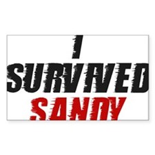 I Survived Hurricane Sandy Decal