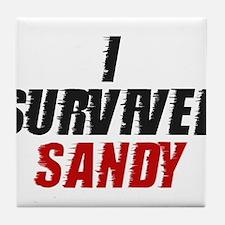 I Survived Hurricane Sandy Tile Coaster