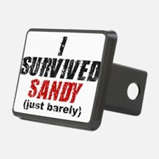 I Survived Sandy (just barely) Hitch Cover