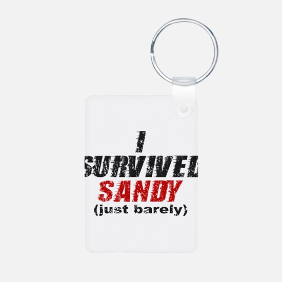 I Survived Sandy (just barely) Keychains