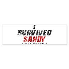 I Survived Sandy (just barely) Bumper Sticker