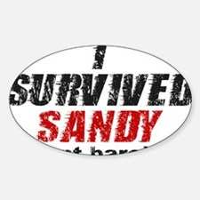 I Survived Sandy (just barely) Decal