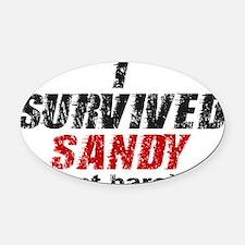 I Survived Sandy (just barely) Oval Car Magnet