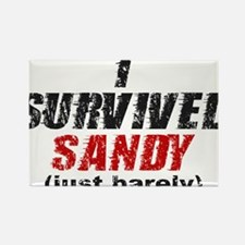 I Survived Sandy (just barely) Rectangle Magnet