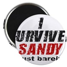 "I Survived Sandy (just barely) 2.25"" Magnet (10 pa"