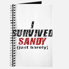 I Survived Sandy (just barely) Journal