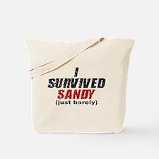 I Survived Sandy (just barely) Tote Bag