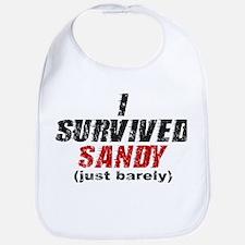 I Survived Sandy (just barely) Bib