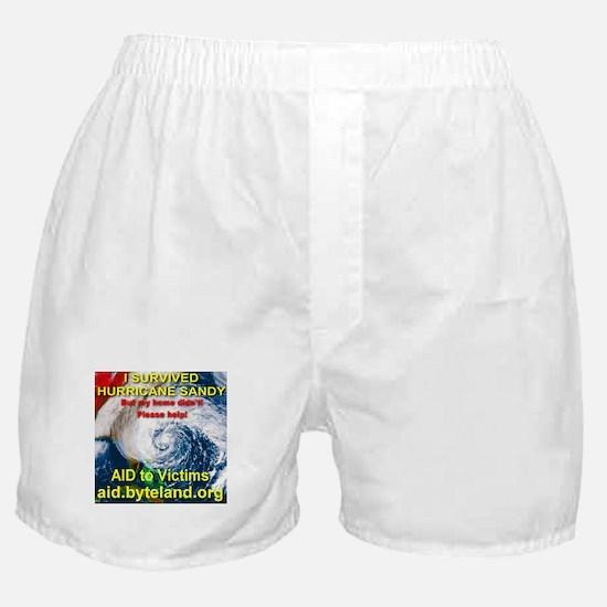 I Survived Hurricane Sandy Boxer Shorts