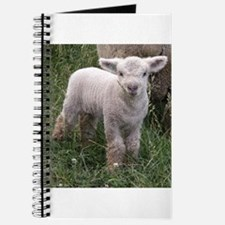 Cute Babydoll Lamb Journal