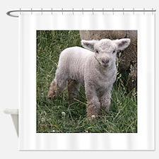 Cute Babydoll Lamb Shower Curtain
