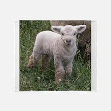 Cute Babydoll Lamb Throw Blanket