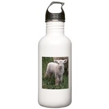 Cute Babydoll Lamb Water Bottle