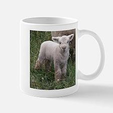 Cute Babydoll Lamb Mug