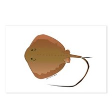Stingray (Southern) ray Postcards (Package of 8)