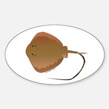 Stingray (Southern) ray Decal