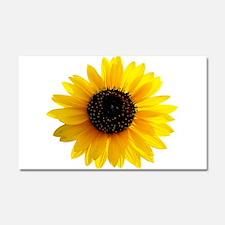 Golden sunflower Car Magnet 20 x 12