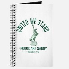 Hurricane Sandy Statue Journal