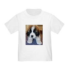 Saint Bernard Puppy T