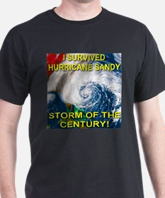 I Survived Hurricane Sandy Storm of the Century Da