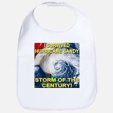 I Survived Hurricane Sandy Storm of the Century Bi