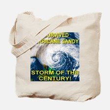 I Survived Hurricane Sandy Storm of the Century To