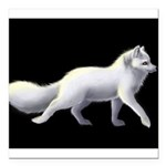 "Arctic Fox 3 Square Car Magnet 3"" x 3"""