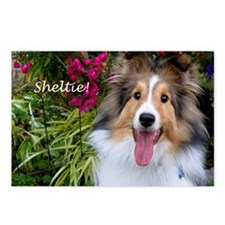 Sheltie! Postcards (Package of 8)
