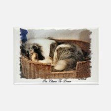 Collie Gifts of Art Rectangle Magnet (10 pack)