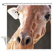 Giraffe Close Up Shower Curtain