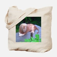 lion 2 Tote Bag