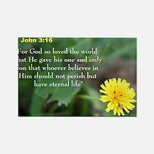 John 3:26 Dandelion Rectangle Magnet