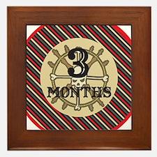 Pirate 3 Months Milestone Framed Tile