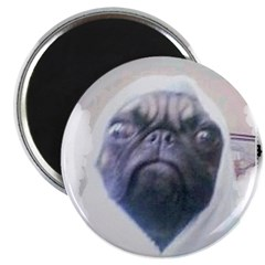PUGS ARE REALLY ALIENS 2.25