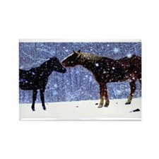 Snow Horse Friends Rectangle Magnet