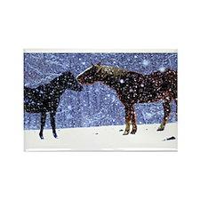 Snow Horse Friends Rectangle Magnet