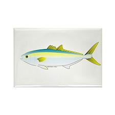 California Yellowtail fish Rectangle Magnet
