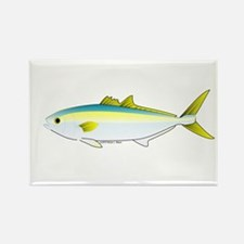 California Yellowtail fish Rectangle Magnet