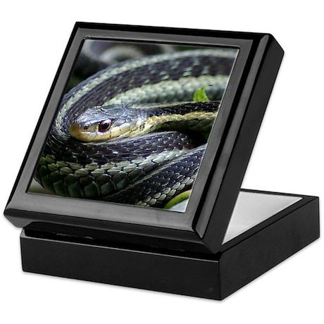 snake-close up Keepsake Box